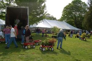HAh plant fair 2012 011
